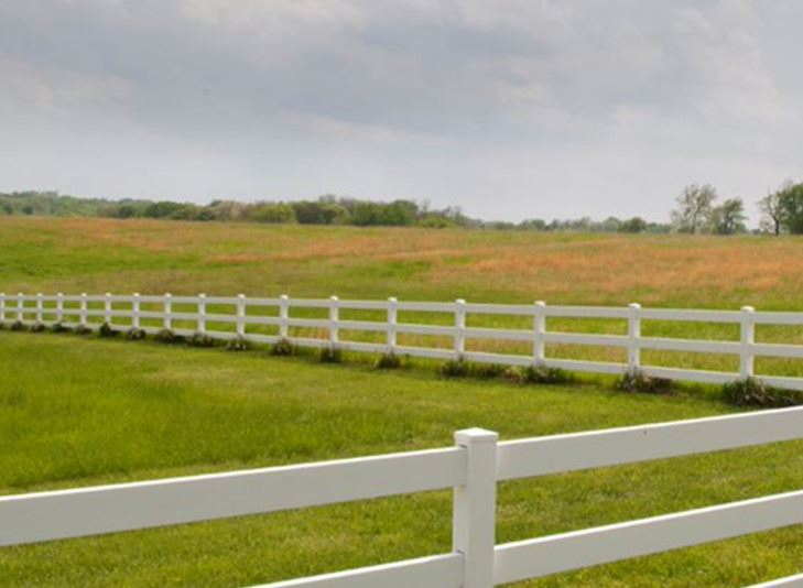 Green Field with White Fence